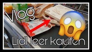 VLOG | Lidl leer kaufen | Haul | OUTING || Reborn Baby Deutsch