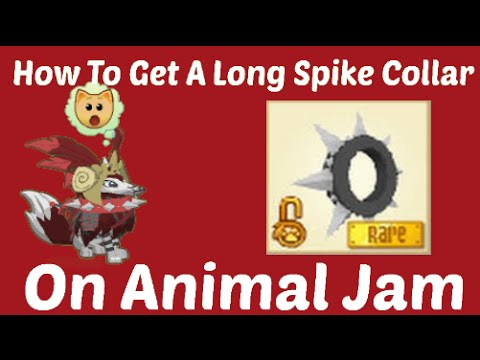 How To Get A Long Spike Collar On Animal Jam