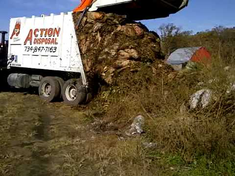 Massive Yard Waste Load