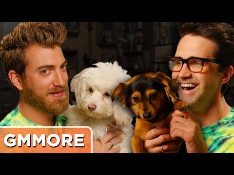 Rhett & Link Dog Update