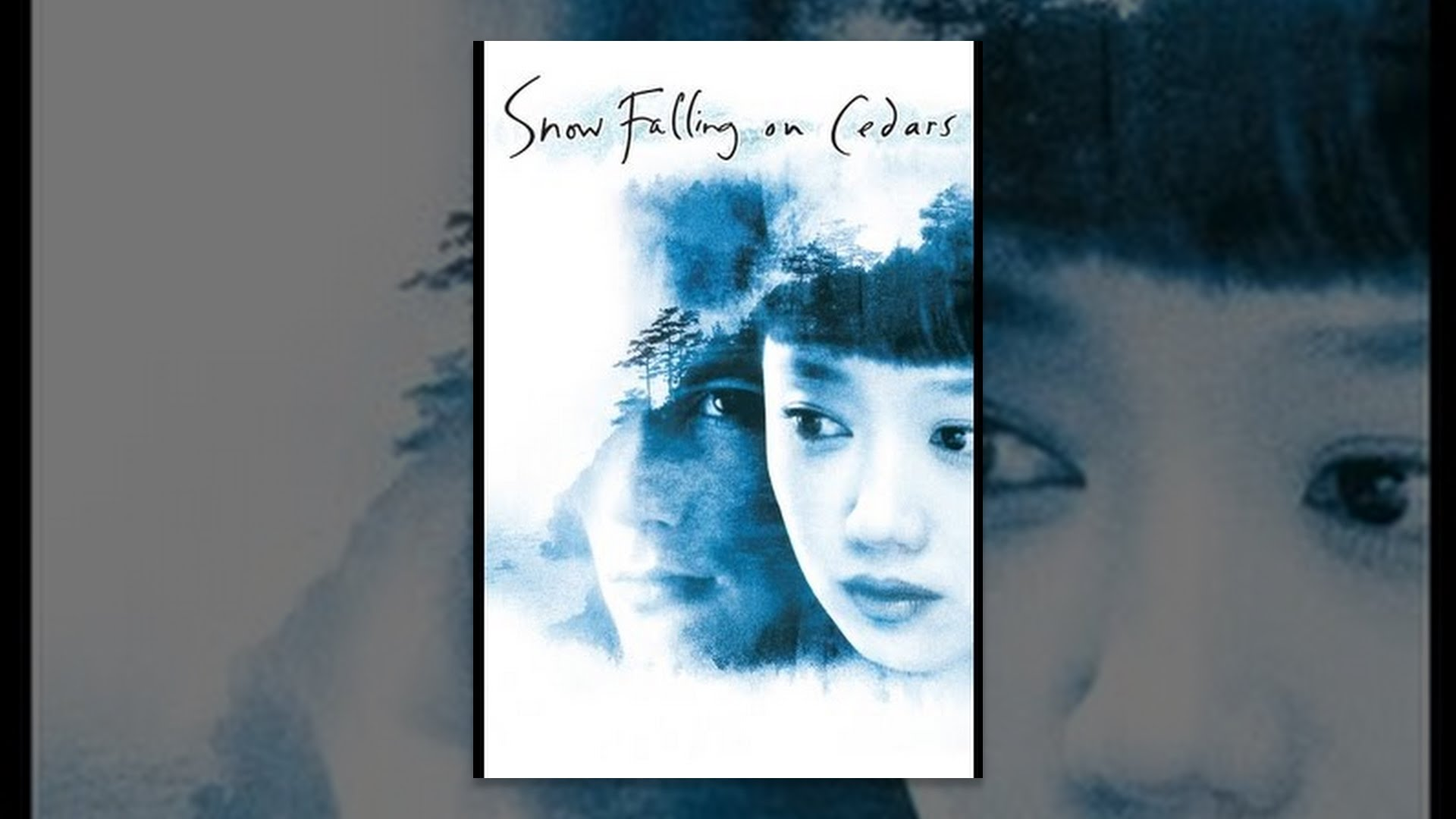 snow falling on cedars criticism response Reading group guide spotlight on: snow falling on cedars snow falling on cedars , 18-year-old hatsue imada gives what seems a naive response to her mother's de-.