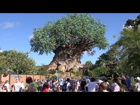 Disney's Animal Kingdom 2019 Tour and Overview Detailed Theme Park Tour Orlando Florida