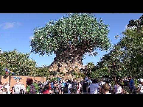 Disney's Animal Kingdom 2019 Tour and Overview Detailed Theme Park Tour Orlando Florida