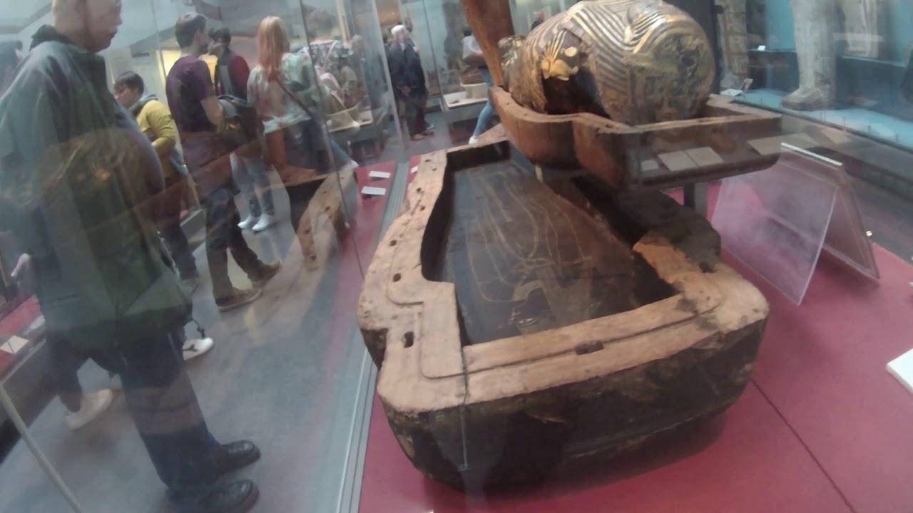 egyiptomi helminták molt ascaris