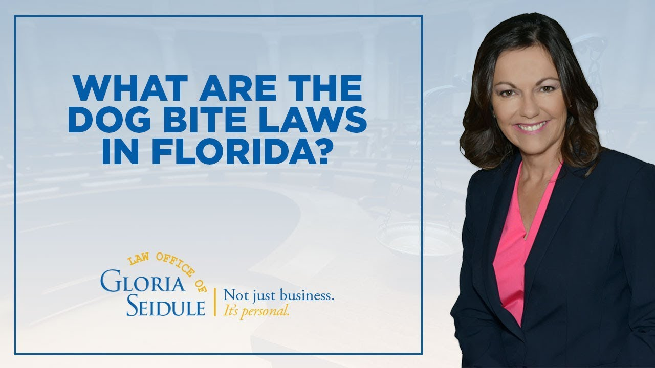 What are the dog bite laws in Florida?