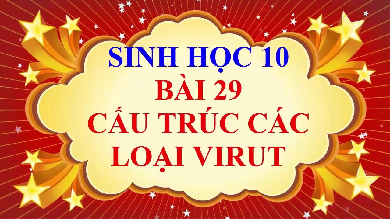 Sinh học lớp 10 – Bài 29 – Cấu trúc các lọa virut