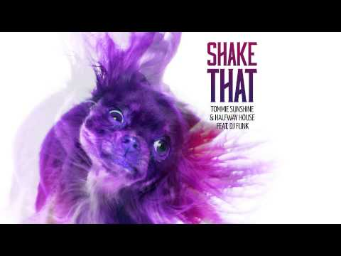 Tommie Sunshine & Halfway House feat. DJ Funk – Shake That (Cover Art)