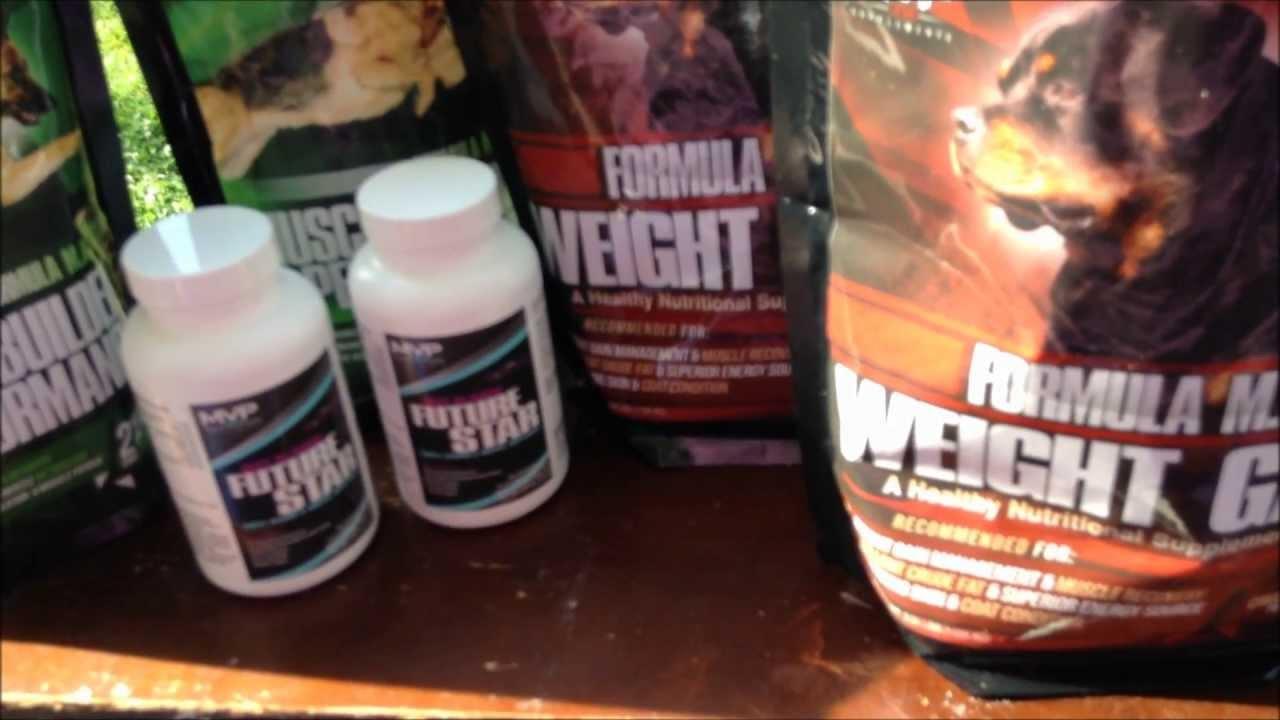next best supplement to steroids