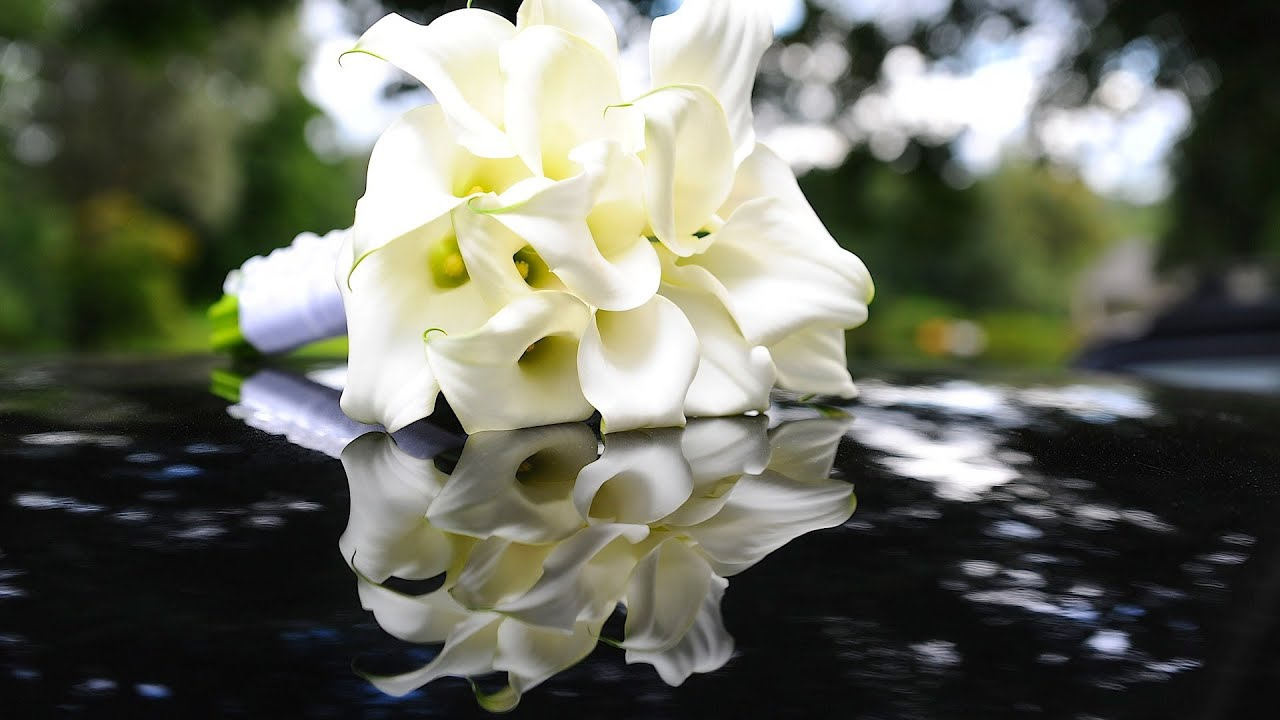 5 Tips About White Flowers Wedding Flowers Youtube