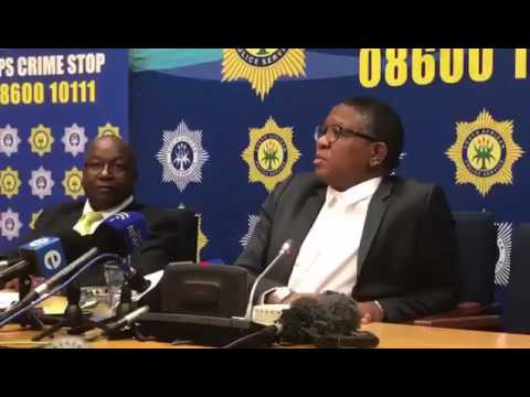 Zim soldiers robbing South African banks: Minister Fikile Mbalula