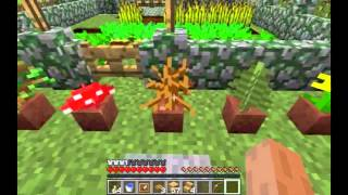 Minecraft Snapshot 12w34a: Item Displays, Cobble walls, Clay Pots And More!