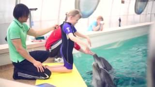 Видео о дельфинотерапии в Евпатории — «Девочка и звери»(Видео история об общении девочки с разными добрыми существами и ее приключениях в Крыму, во время прохожден..., 2014-07-16T16:08:58.000Z)