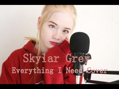 Skylar Grey - Everything I Need (Aquaman Ending Song) Cover