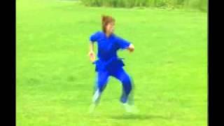 Chang quan Guiding zhongji (centre wushu sport) kung fu grenoble