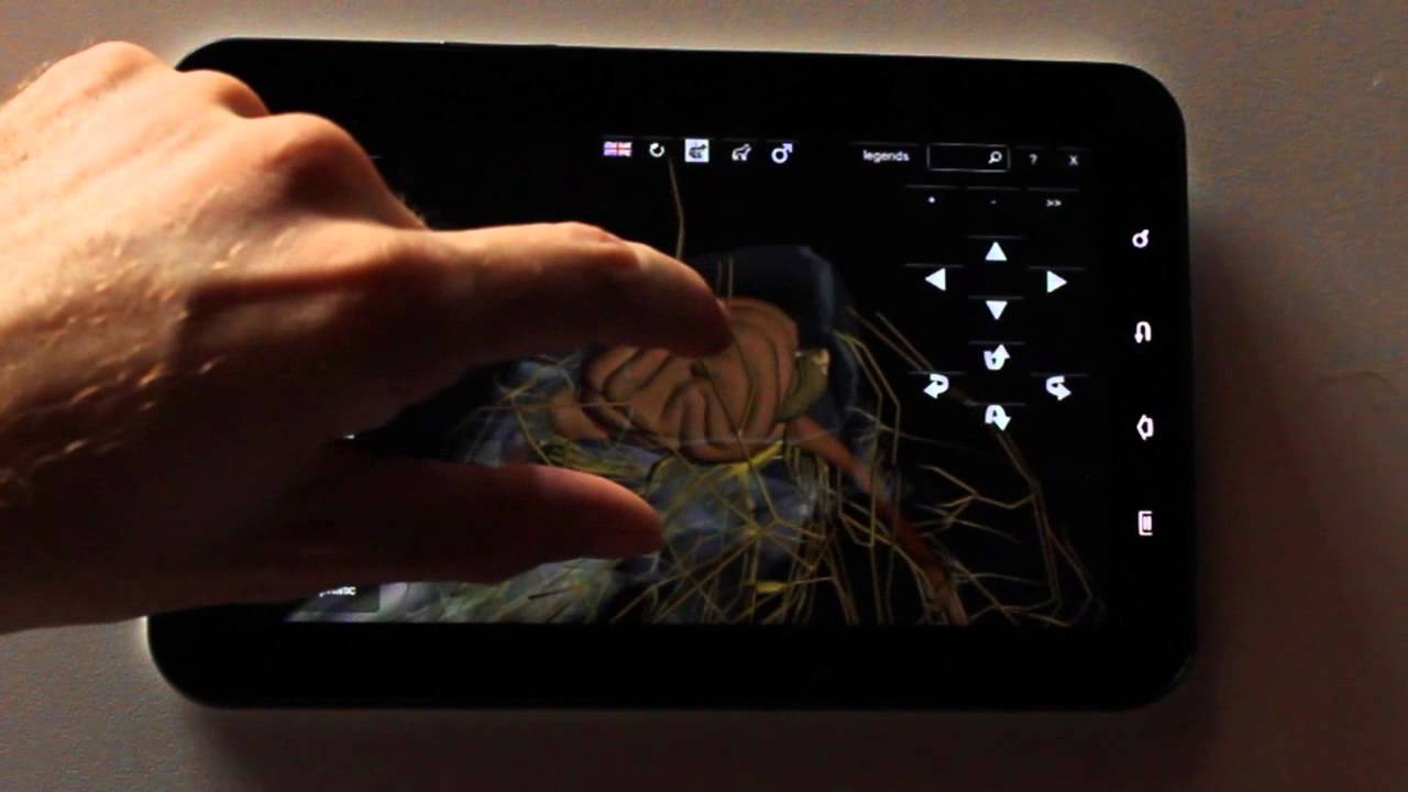 3D Dog Anatomy Software on a Android device - YouTube