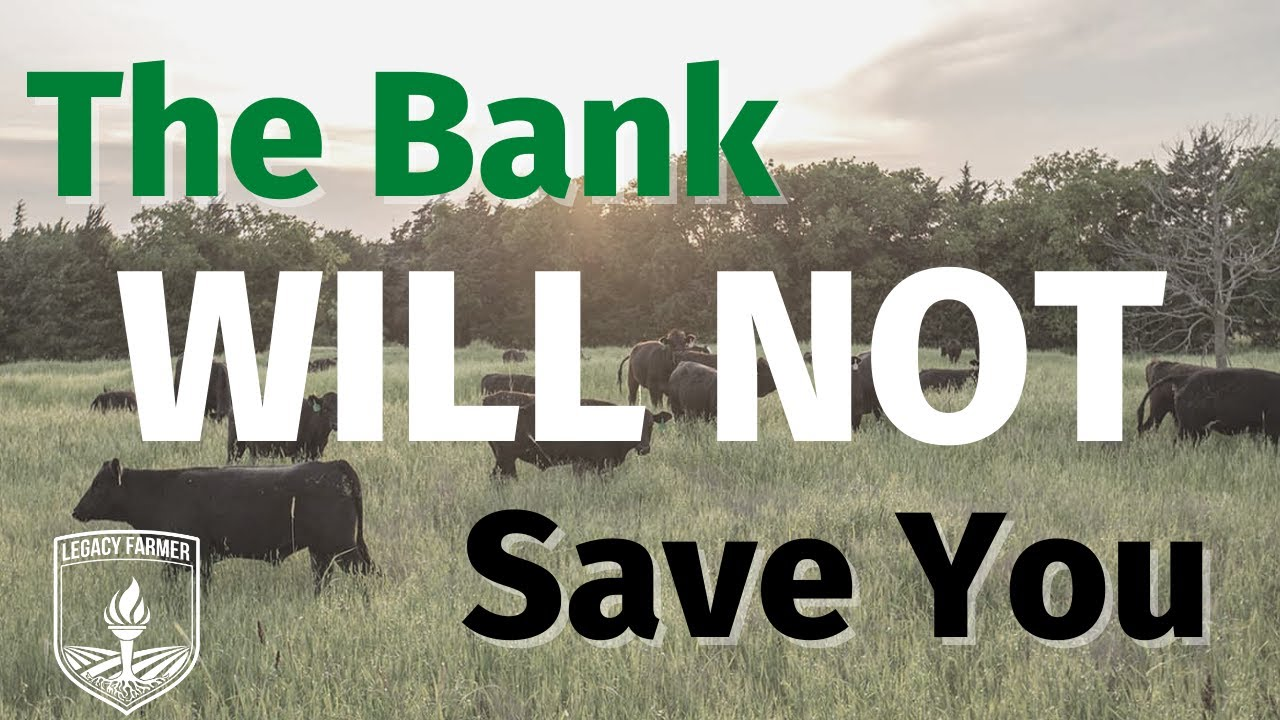 The Bank Will NOT Save You