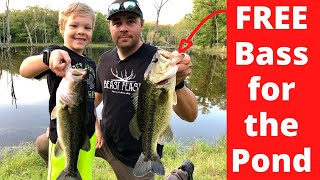Stocking Our Pond with Lots of BIG BASS!