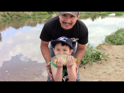 Catching Bait And Having Fun With The Kids