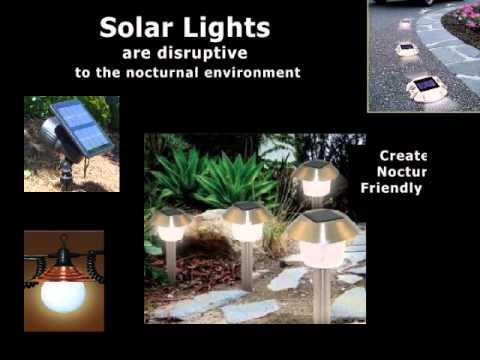 LIGHT POLLUTION PPT 2015  Rena Woss
