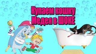 Как помыть кота Сфинкс плавает Уход за сфинксом