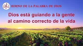 Canción cristiana | Dios está guiando a la gente al camino correcto de la vida