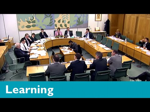 What are select committees and how do they work?