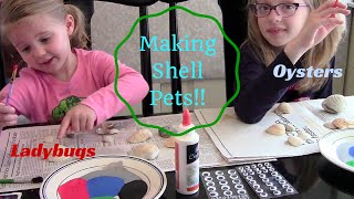 Making Shell Pets! / Ladybugs / Oysters and More! Shell art