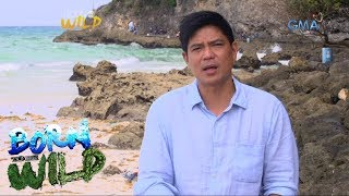 Born to Be Wild: First look at Boracay with Doc Nielsen and Kiko Rustia