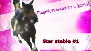 Pimpek zamienił się w konia ?!  / Star stable #1/