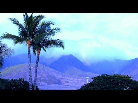 *Amazing Hawaii*