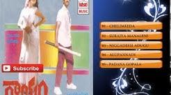 Telugu Hit Songs | Gaayam Movie Songs | Jukebox