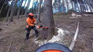 GoPro -Praca w lesie & ścinka, zrywka drewna...
