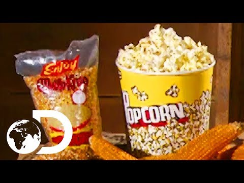 POPCORN | How It's Made
