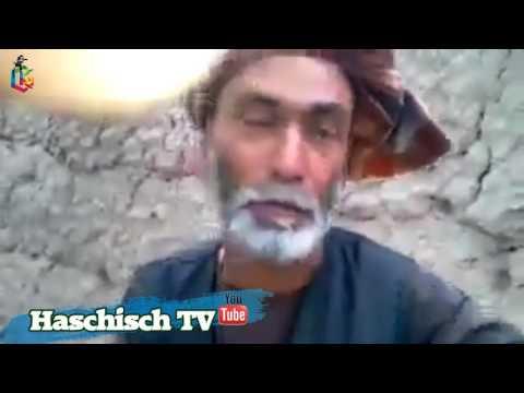Afghanian hashish culture