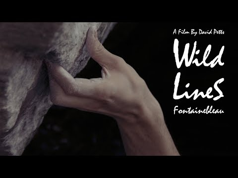 Wild Lines: Fontainebleau