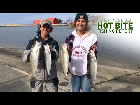 Lake Michigan Beach Trolling Fishing And More! - Hot Bite Fishing Report - March 18th