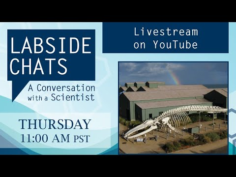 video:Labside Chats: A Conversation with a Scientist, featuring Adina Paytan, Ph.D.