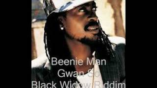 Beenie Man- Gwan So- Black Widow Riddim