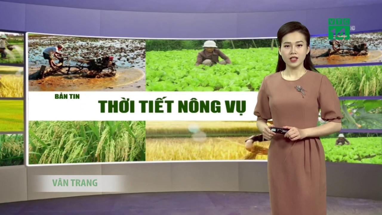 Thời tiết nông vụ 03/04/2020: Mưa dông bao trùm cả miền Bắc| VTC14