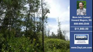Land For Sale Puna HI Real Estate on 0.28 Acres-Acres $11980.00 Puna HI Howard Meguro RS