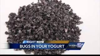 Bugs in your yogurt.. on purpose!