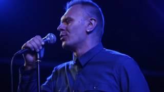 Був'є - Голова (live)| Волинські Новини