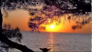 Download Ф. Шуберт - Вечерняя серенада F. Schubert - Serenade Mp3 and Videos