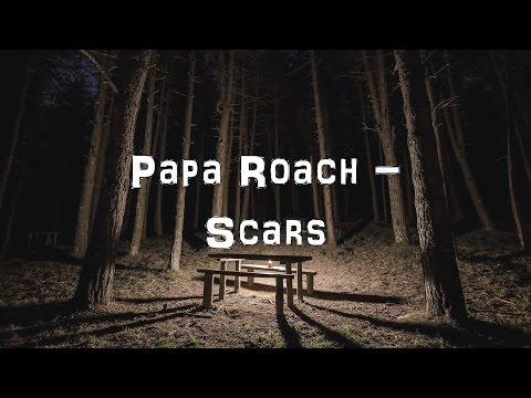 Papa Roach - Scars [Acoustic Cover.Lyrics.Karaoke]