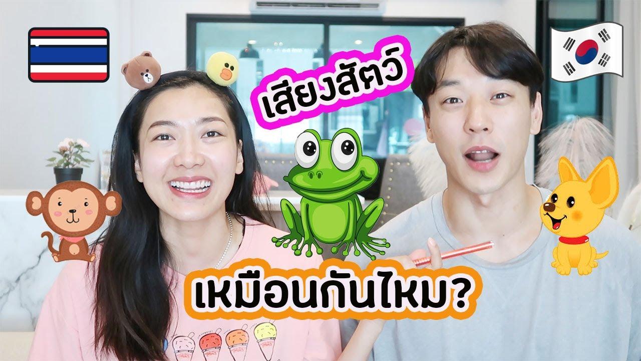 เสียงสัตว์ที่ไทย กับเกาหลี ต่างกันมาก EP46 | AJ Family
