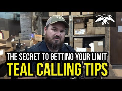 Teal Calling Tips - Learn how to COMMAND the Ducks