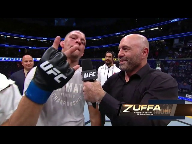 UFC 241: Nate Diaz Octagon Interview