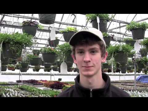 Churchill's Garden Center Hires Terrific Young Employees!