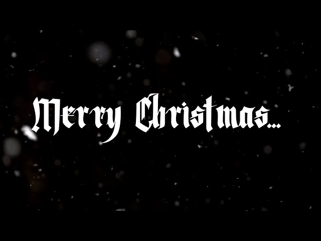 Merry Christmas From APEX Disaster Specialists