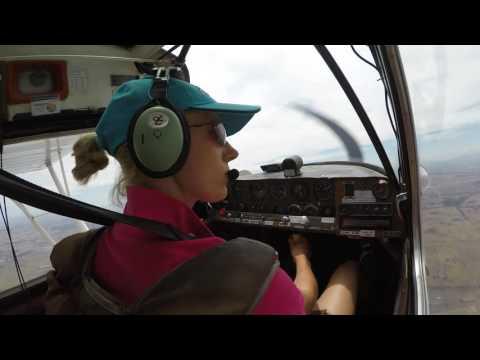 Bellanca Scout Flight